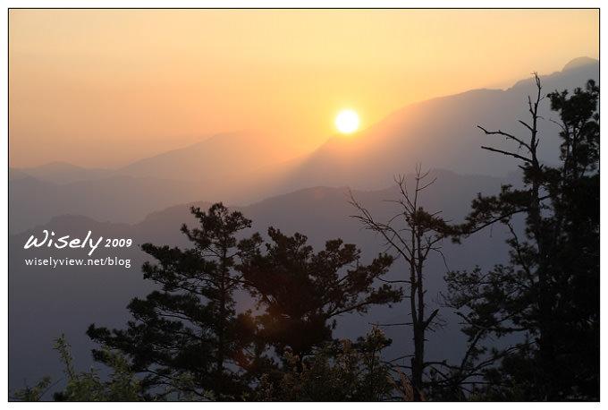 【遊記】2009阿里山賞櫻:阿里山觀日樓賞日出 -3