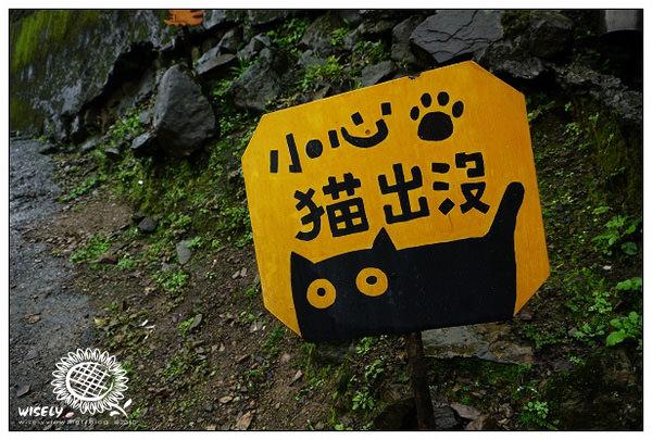 【旅遊】 ABW聚會:(新北候硐) 遊猴硐.賞山嵐.尋貓蹤