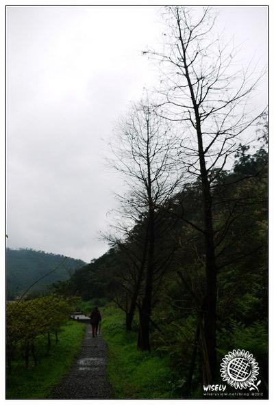 【新年】2010 宜蘭.初三:員山望龍埤隨拍