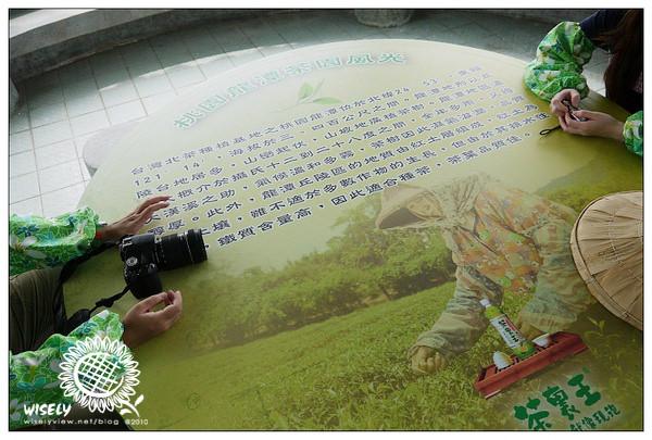 【活動】桃園龍潭:茶裏王.北茶文化之旅 (三水茗園)