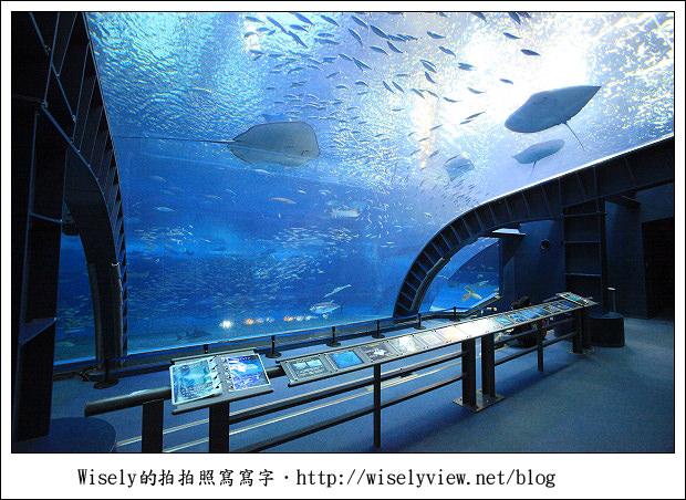 【旅行】2011(日本)沖繩-03:海洋博公園-沖繩美麗海水族館《琉球必去景點推薦》