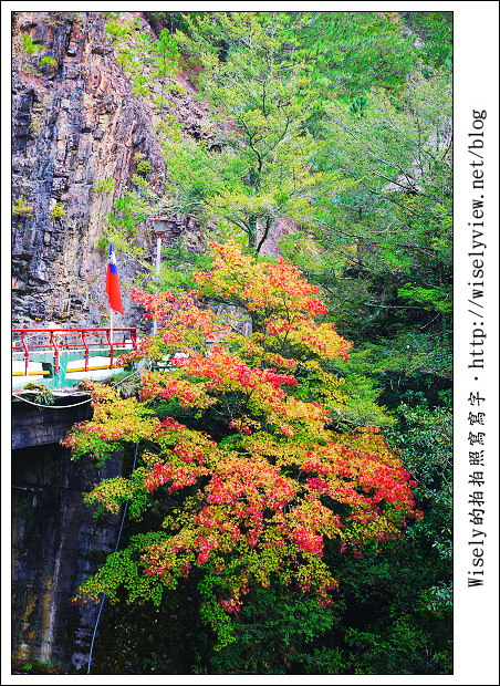 【遊玩】2011台中武陵農場楓紅隨手拍:Lumix GF1 + 14-42mm X