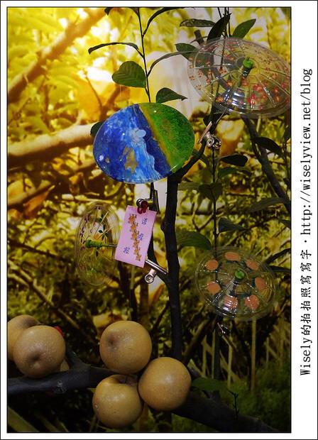 【遊玩】宜蘭縣.三星鄉:青蔥文化館、田媽媽蔥蒜美食館、2011銀柳節搶先看~(農曆過年必去景點)