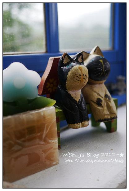 【隨拍】Panasonic Lumix GX1:桃園縣.復興鄉~我在7號公路遇見貓,牠的名字叫布丁(圖多分頁有貓寫真)