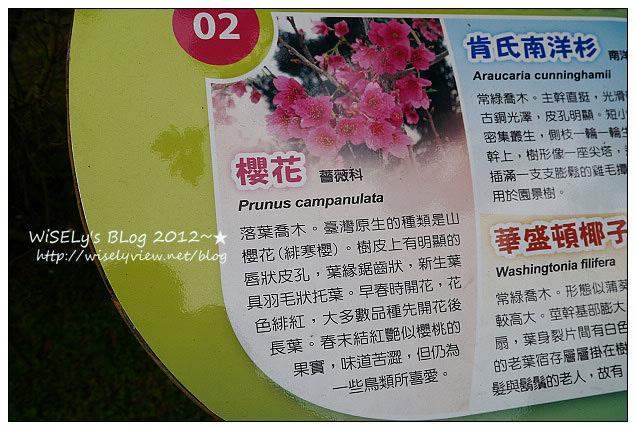 【隨拍】Panasonic Lumix GX1:台北市.中正紀念堂:櫻花步道輕鬆行(含拍攝場地指南&交通資訊),適合全家老小一起去走走~以及周邊美食相關分享