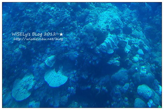 【遊玩】2012台東綠島遊:輕鬆乘坐半潛玻璃船,來看海底裏太空的珊瑚美景
