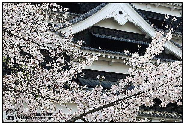 【旅行】2013日本九州。熊本市:天下名城熊本城賞櫻,櫻之馬場-湧湧座&櫻之小路漫遊