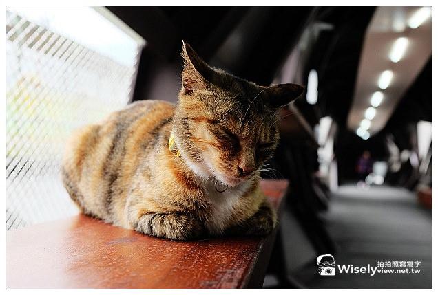 【景點】新北市。瑞芳區:(猴硐)候硐貓咪村~貓橋巡禮&街貓隨拍、大麵發老麵店、貓村咖啡,以及米詩堤黃金泡芙@FUJIFILM X100s隨拍…(貓公車與漫遊路線分享)