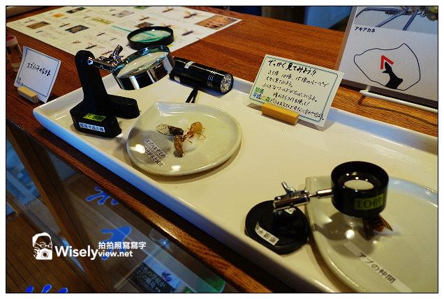 【旅行】2013日本。栃木縣:那須平成之森@親近大自然,曾為皇室專屬的日光國立公園
