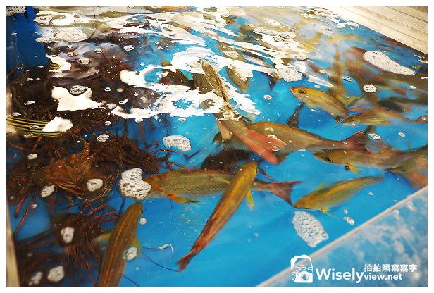 【旅行】日本。和歌山縣:西牟婁郡白濱町@南紀白浜散策~白浜駅、円月島、白良浜海水浴場(Fisherman's Wharf、Bay-Ya)