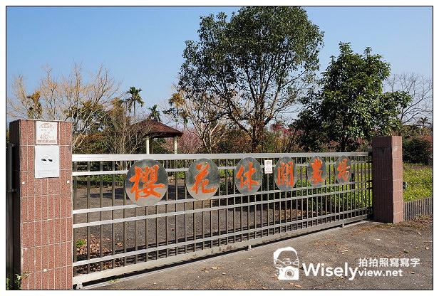 【景點】宜蘭縣。大同鄉:李花櫻花秘境@泰雅一路400號沿途右側,櫻花休閒農場之前