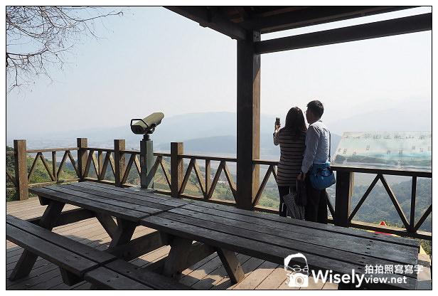 【景點】宜蘭市。大同鄉:(田媽媽)茶之鄉民宿、玉蘭茶園@沿途櫻花伴環山美景