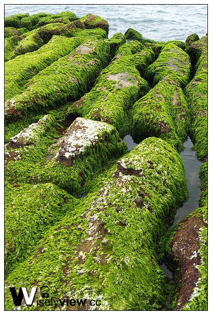 【遊記】新北市。石門區:劉家肉粽、2014老梅綠石槽(季節限定)@交通資訊與拍攝心得