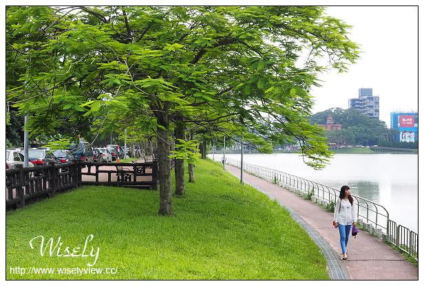 【遊記】台北市。內湖區:碧湖公園&碧湖織屋@竹編特色城堡,夜間光影更夢幻