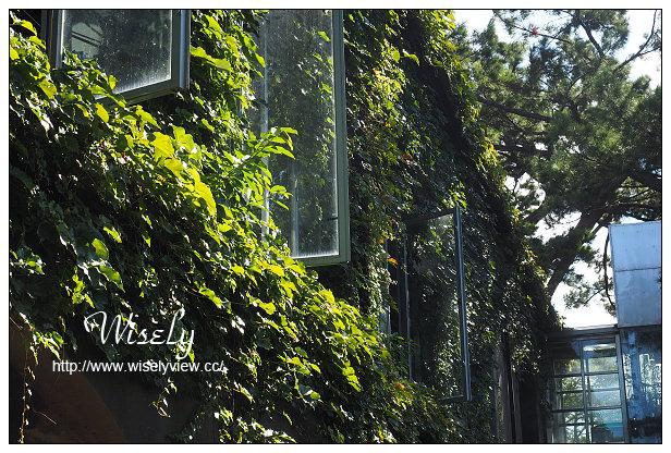 【遊記】花蓮縣。花運市:松園別館、臥松園區@日式懷舊建築,漫步幽靜老松林間