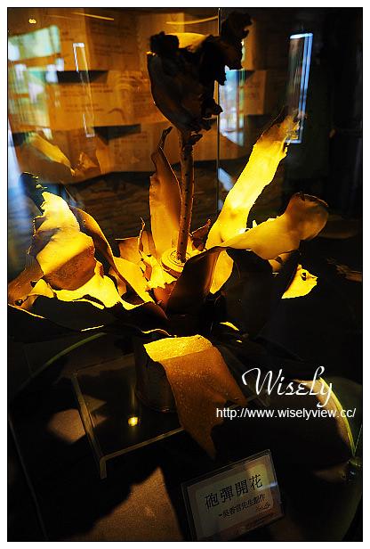 【遊記】2014馬祖自由行。北竿景點:大胆據點、戰爭和平紀念公園主題館、壁山、馬祖漁產企業社