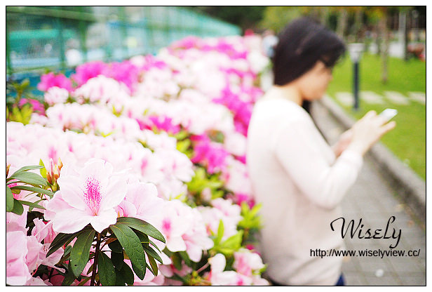 【食記】台北市。大安區:獵果鋪@在地食材水果入味手搖茶輕食,2015台大杜鵑節隨拍