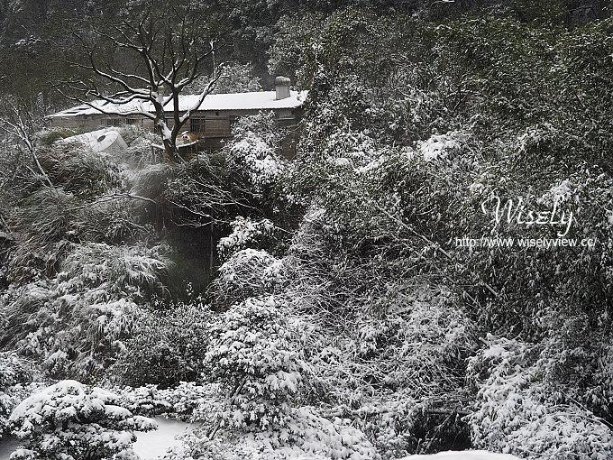 【遊記】台北市。北投區:2016陽明山竹子湖@北極振盪雪景、北投瀧乃湯浴室&簡記排骨麵
