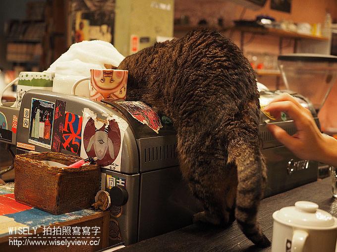 【食記】台北大安。捷運台電大樓站:路上撿到一隻貓@提供插座網路的貓咪咖啡店