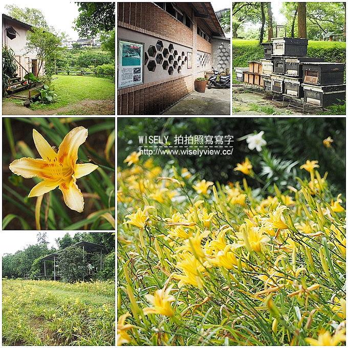 【遊記】新北市。三芝鄉:牧蜂農場@特色金針花田小秘境,還有天然風味蜂蜜茶~(交通方式)