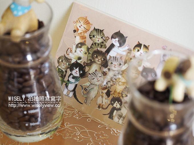【食記】宜蘭縣。礁溪鄉:伍拾號咖啡店@鐵馬族與愛貓族必訪的北歐風輕食咖啡店
