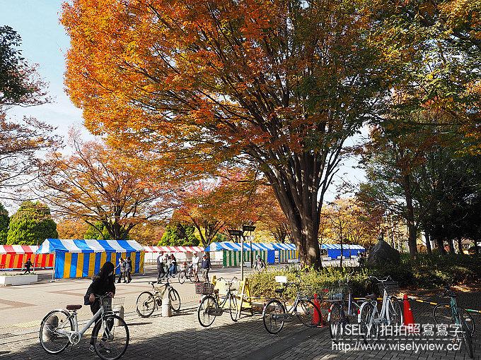 《東京自由行》銀杏景點:光之丘公園/都立光が丘公園@都營大江戶線至光が丘駅(E38)