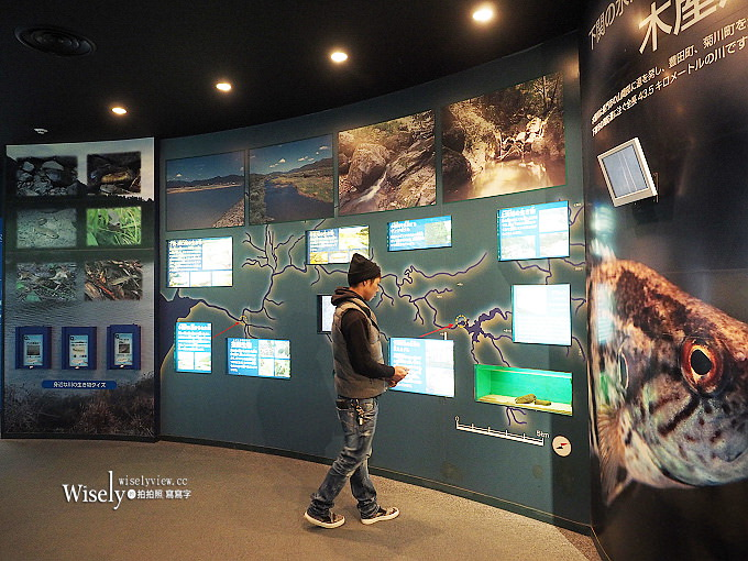 《山口縣下關市。海響館》中國地區最大水族館,可近距離看到企鵝與海豚~鄰近唐戶市場
