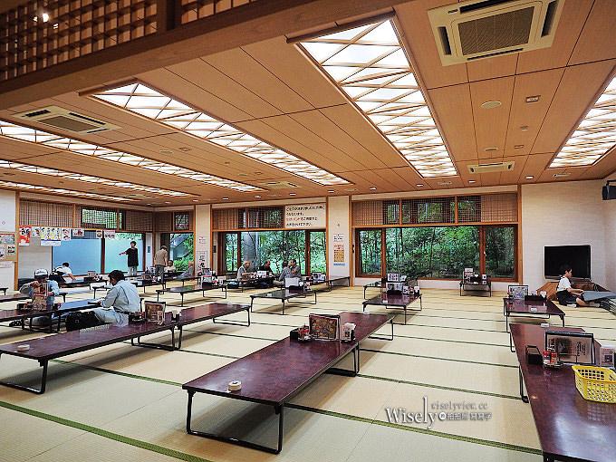 《東京近郊景點。日の出町》登山健行溫泉野釣,平井川寺廟散策,新宿出發一小時抵達
