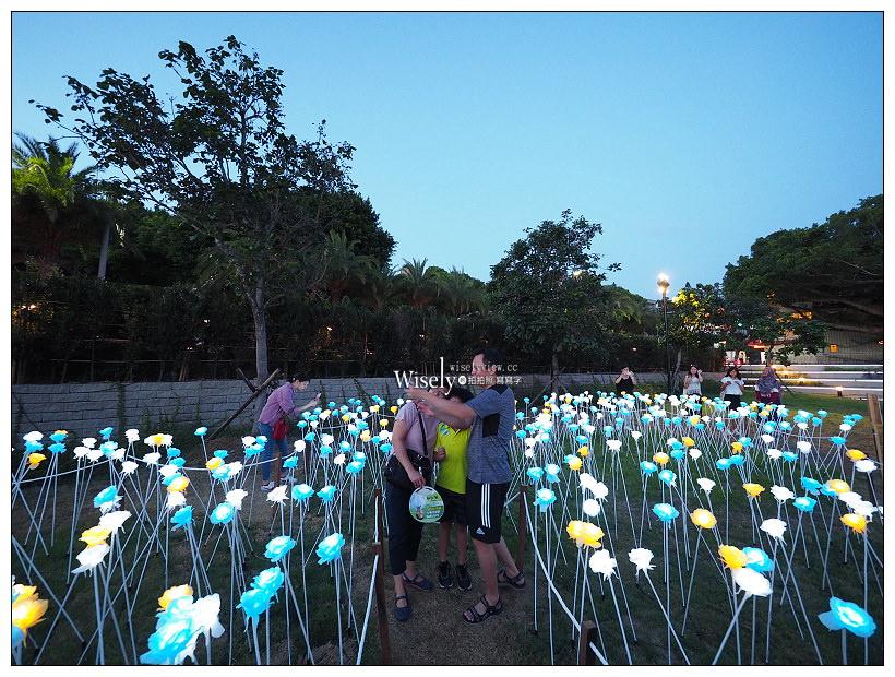 新北市。淡水海關碼頭園區︱超浪漫LED玫瑰花燈海、金色水岸自行車道