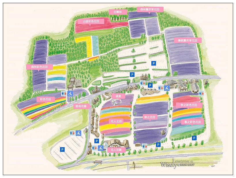 富良野。富田農場︱北海道最美麗大面積薰衣草花田,各類色彩花卉盡收眼底