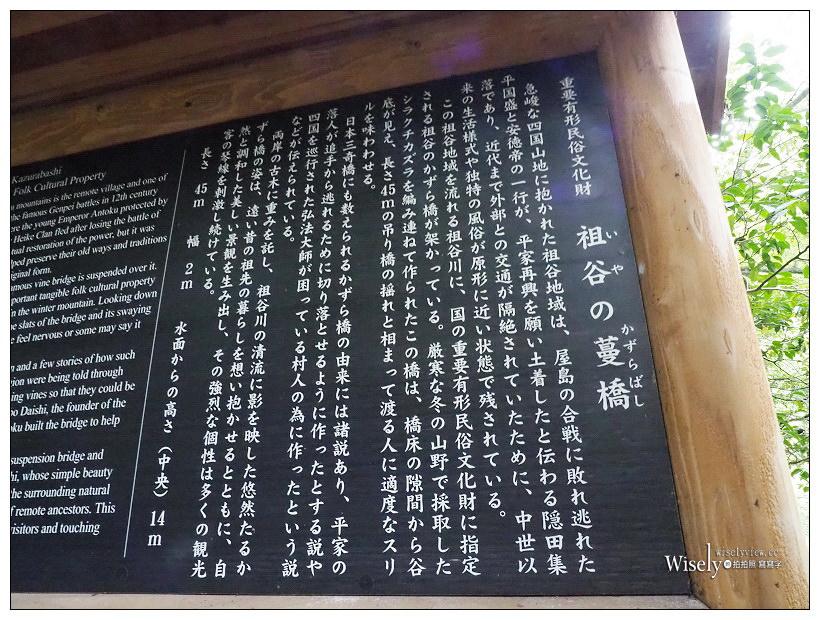 德島景點。祖谷蔓橋/かずら橋︱大步危峽谷秘境內,步步驚心的日本三大奇橋