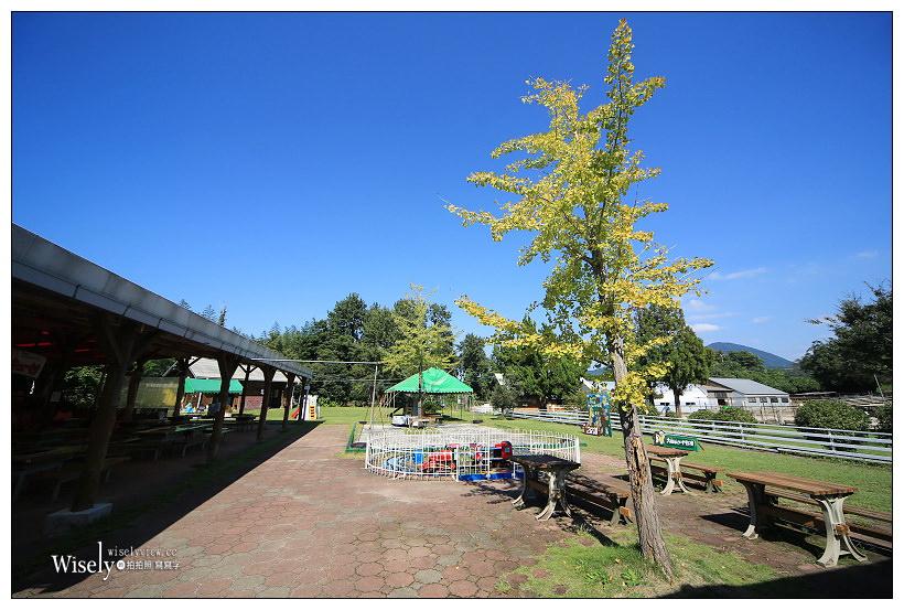 鳥取景點。Oyama Tom Sawyer Bokujo/大山トム・ソーヤ牧場︱可近距離與動物接觸的觀光農場